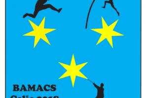 LogoBAVACS1